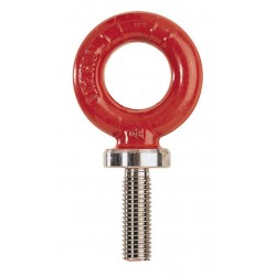 RGS Alloy steel eyebolts