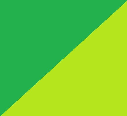 dunkelgrün / hellgrün